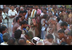 The beats get louder and faster... (Trilok Rangan) Tags: light elephant festival temple panchavadyam melam mahout chenda vilakku pazhayannur bhagavathy thidambu niramala panchari