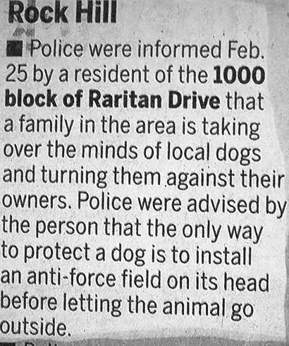 dogcontrol