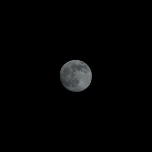 The 13rd Moon Nov 2010