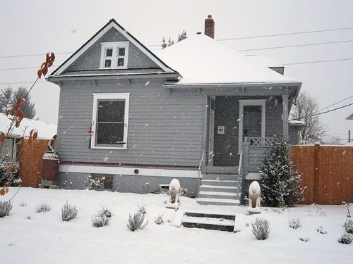 November Snow 2010 020