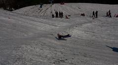 IMG_4659 (bkraai2003) Tags: seattle park sun snow kite kids fun hill gas works sledding sleds