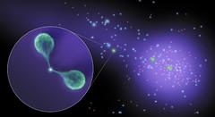Cúmulos galácticos