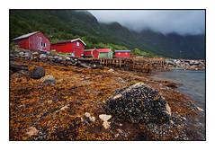 (Giordano Bertocchi - www.giordanobertocchi.it) Tags: ocean sea norway landscape mare harbour porto paesaggio norvegia bod oceano rorbu coastalroute storvik stradacostiera