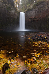 Abiqua Calls (Dan Sherman) Tags: fall oregon waterfall fallcolor northwest fallcolors falls waterfalls pacificnorthwest oregonwaterfalls dansherman abiqua pacificnorthwestlandscape oregonwaterfall northwestwaterfall pacificnorthwestphotography abiquafalls pacificnorthwestwaterfalls pacificnorthwestwaterfall danielsherman northwestwatefalls fallinoregon falloregon danshermanphotography fallandwaterfalls northwestwaterscape danshermanphotographycom danielshermanphotography
