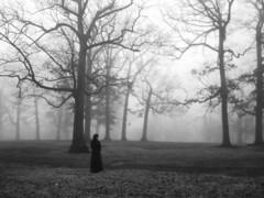Gothic (Celtic~Dancer) Tags: trees blackandwhite bw woman usa selfportrait tree girl monochrome fog mystery virginia sony gothic sp roanoke mysterious sonycybershot dscw80