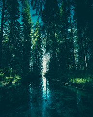 Do you know these oddly blue forests? (Haapih) Tags: forest landscape water lake surreal moody finland suomi kiuruvesi woods sun sunlight