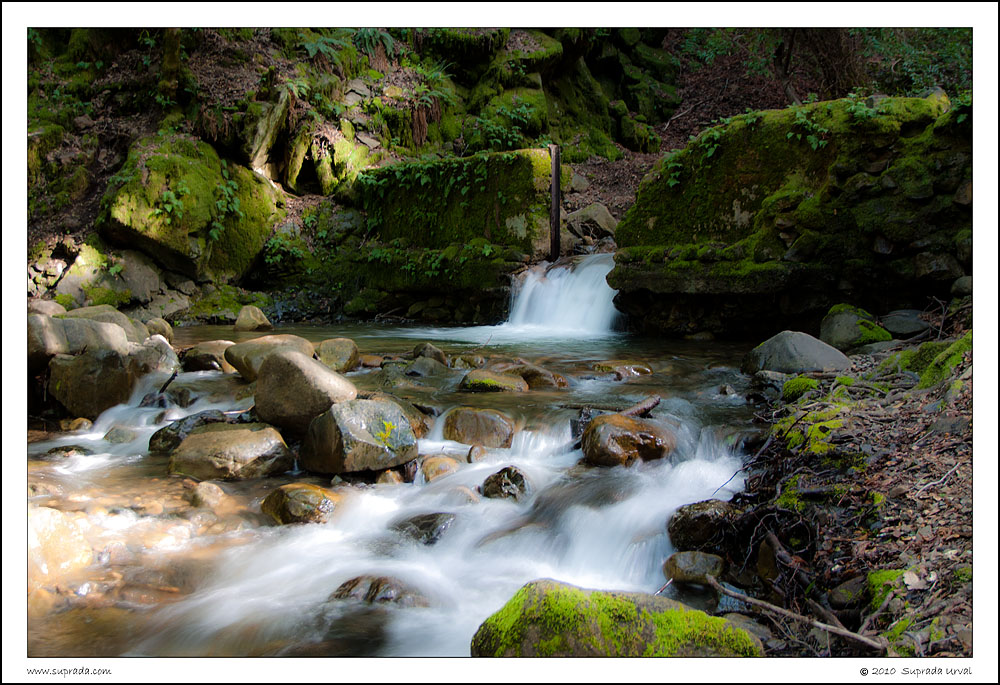 Uvas Canyon Waterfall - 1