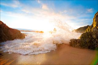 Early Evening Splash