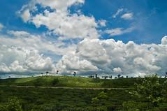 Satchari Forest Area ((_.•*`*•.ChobiWaLa.•*`*•._)) Tags: park green nature beauty forest garden nikon tea national jungle sylhet bangladesh srimongal ecopark d90 hobiganj satchari chobiwala ripervezgmailcom