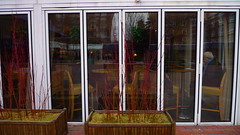 Reflections at the Charles Hotel in Harvard Square - Des reflets de l'hotel Charles dans Place Harvard (eileansiar) Tags: leica cambridge woman usa reflection window glass square lens hotel alone massachusetts harvard charles solitary solitaire 02138 eileansiar dlux4