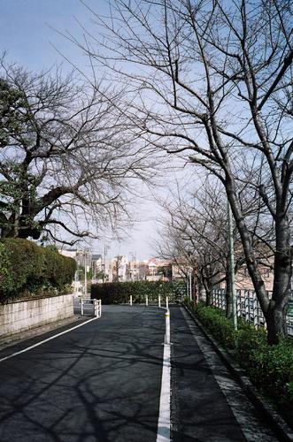 tokyo2009_film_15