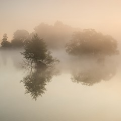 Pen Ponds (Duncan George) Tags: uk mist lake london nature reflections landscape outdoors dawn landscapes pond nik