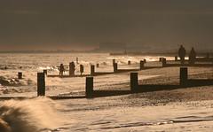 Southwold Shoreline (Julian Barker) Tags: winter wild beach canon eos rebel suffolk walkers southwold xti 400d