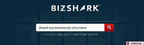 bizshark logo