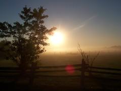 Dream (Francis21Lefebvre) Tags: morning sun toronto sunrise landscape soleil champs matin levdesoleil