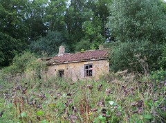 (Hannard) Tags: abandoned window fireplace dish decay cottage ruin lincolnshire hidden bunker hearth range derelict rhubarb radar ruined secluded urbex wolds rurex