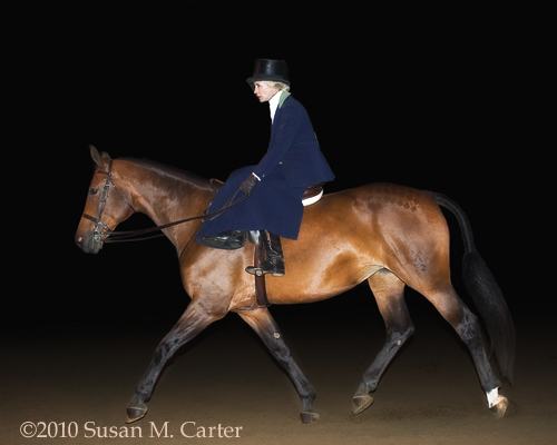 Penny Denegre, Garnet in ladies side saddle at Warrenton Horse Show