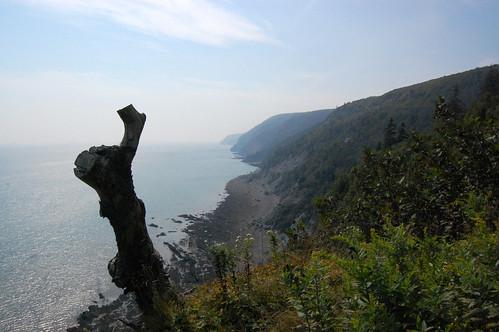 Cape Chignecto (325)