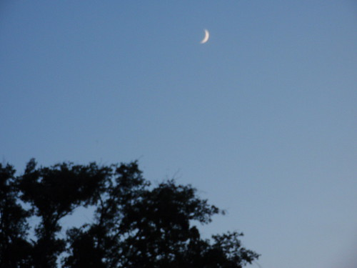 Hello Crescent Moon