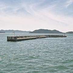 125 |  (okanoyasushi) Tags: blue sea sky bird japan square seagull sigma okayama foveon dp2s