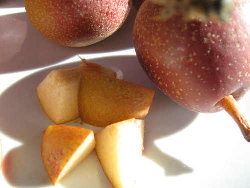 "image: ""Ayers"" heirloom pear"