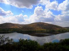 eymir 022 (ebruzenesen - esengül) Tags: sky türkiye mavi bulut gökyüzü yeşil göl yansıma orman eymir arazi ağaçlar odtü kayıkhane eymirgölü ortadoğutekniküniversitesi ebruzenesen esengülinalpulat