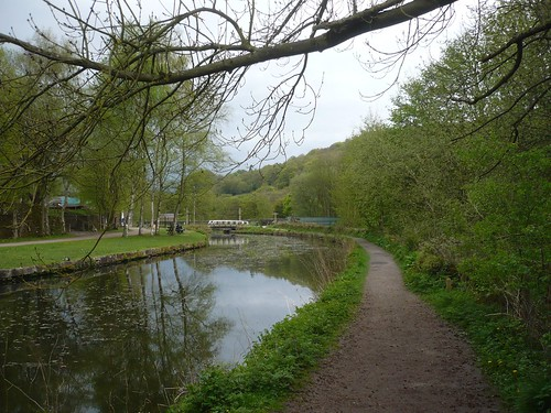 Cromford Canal I ~ 2nd May 2010