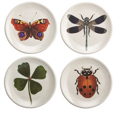 John Derian for Target Insect Appetizer Plates