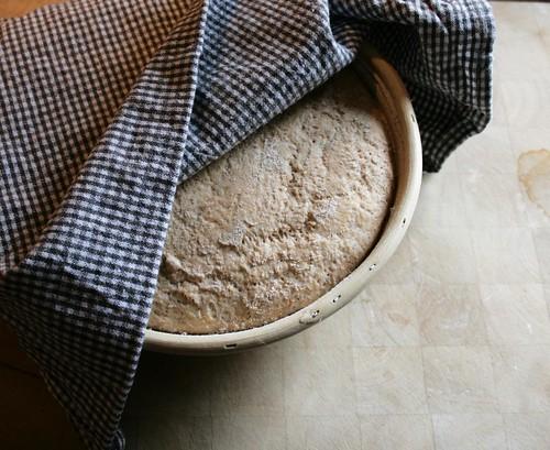 brød i kurv hævet