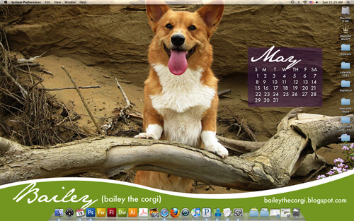 Corgis (with blogs) Digital Calendar