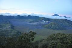 Sunrise over Java's Icon (_Codename_) Tags: indonesia volcano java caldera bromo 2010 mountbromo seaofsand mtbromo mountsemeru cemorolawang bromotenggersemerunationalpark mtsemeru tenggercaldera mtbatok mountbatok mtpananjakan lautpasir mountpananjakan