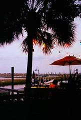 tropical lights and warm summer nights (~RichArtpix~) Tags: summer southcarolina palmtrees tropical marsh murrellsinlet summerevenings murrellsinletsouthcarolina bubbalove warmsummernights murrellsinletmarshwalk tropicalcafes