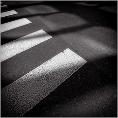 * (Tarzisius Koch) Tags: street asphalt zebrastreifen zebracrossing pedestriancrossing streetviews shadowsandlight fahrbahnmarkierung roadsurfacemarking fusgngerstreifen strasenmarkierung