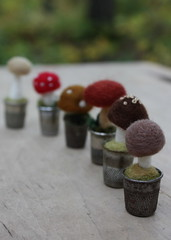 thimblescape (lilfishstudios) Tags: felted mushrooms fungus tiny needlefelting toadstools vintagethimbles