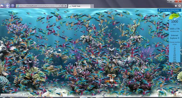 FishTank1000_IE9