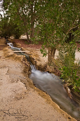 In motion (Hanan MH) Tags: longexposure tree wet water log sand earth farm ground kuwait q8 wafra hananmhkuwait hananmh