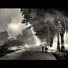 Happy Together (h.koppdelaney) Tags: life street morning trees dog mist art fog digital photoshop happy countryside energy paradise child view symbol walk magic picture peaceful happiness philosophy mind awareness spiritual metaphor symbolism psychology archetype instinct koppdelaney