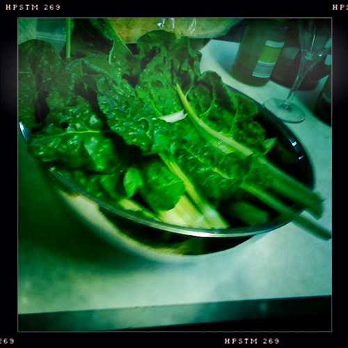Home grown silverbeet