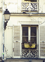 Paris  (sma_kee) Tags: flowers autumn paris france love window architecture sill streetlamp montmartre shutters blinds oldbuilding urbanphotography crackedpaint frenchwindow parisiennewalkways vintagelookingphotography thehomeofanartist livinginparis dwwg