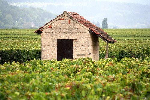 Burgundy, France by Megan Mallen, on Flickr