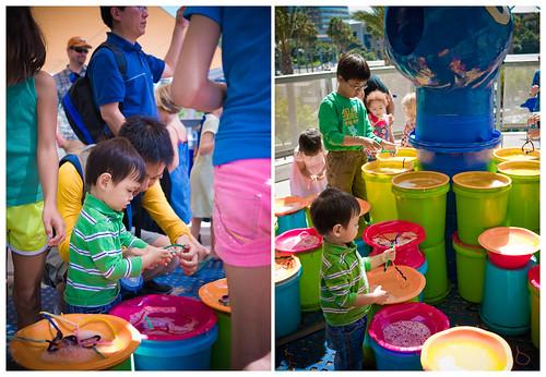 New Children's Museum4