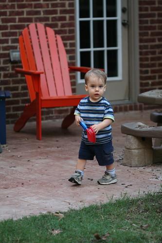Backyard 9.28.2010