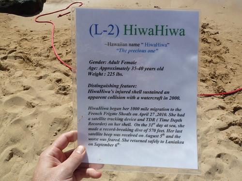 Info sheet on HiwaHiwa