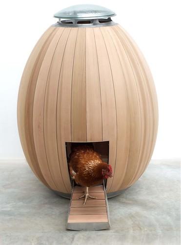 Nogg Modern Chicken Coop