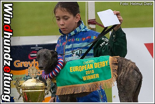 CGRC European Derby 2010 Whippet Champion: Oxana Supersonic, CZ