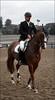 Karl Wechselberger (Lù *) Tags: show horse jump jumping queen gucci siena cavallo showjumping cavaliere murlo concorso bagnaia equitazione