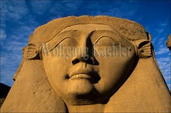 10040175 (wolfgangkaehler) Tags: africa detail closeup temple ancient close egypt stonecarving carving nile egyptian hathor nileriver ancientegyptian dendera ancienttemple egyptiantemple templeofhathor ancientcarving ancientruin egyptiancarving denderaegypt neardendera