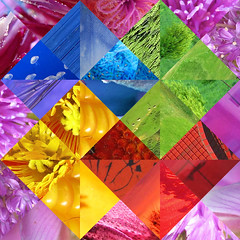 Card Trick - Photo Quilt (Batikart) Tags: blue red abstract green rot art yellow collage ca