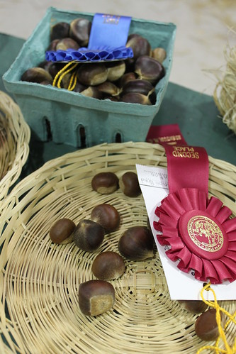 Chowan County Fair - Chestnuts