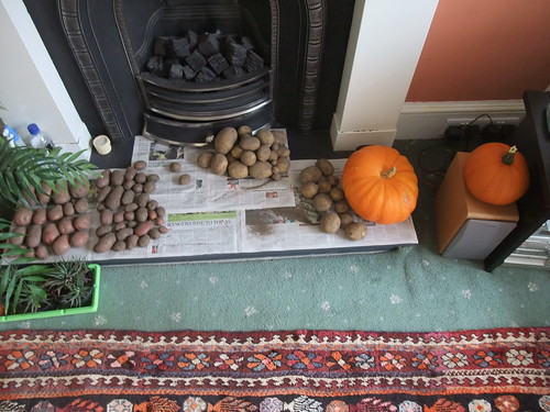 Potatoes and pumpkins
